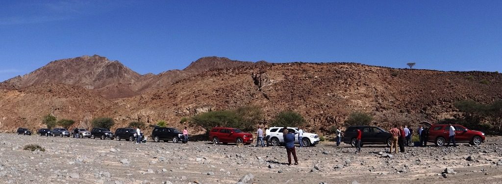 A Collection Of Durangos in Wadi